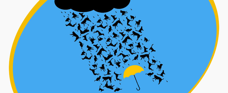 Raining Cats and Dogs: English Idioms with Surprising Origins