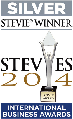Grammar Camp - Stevie Award